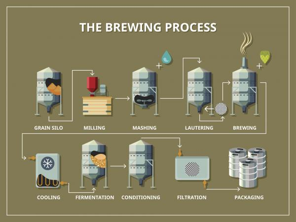 Understand The Brewing Process